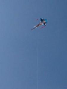 premier kites 10